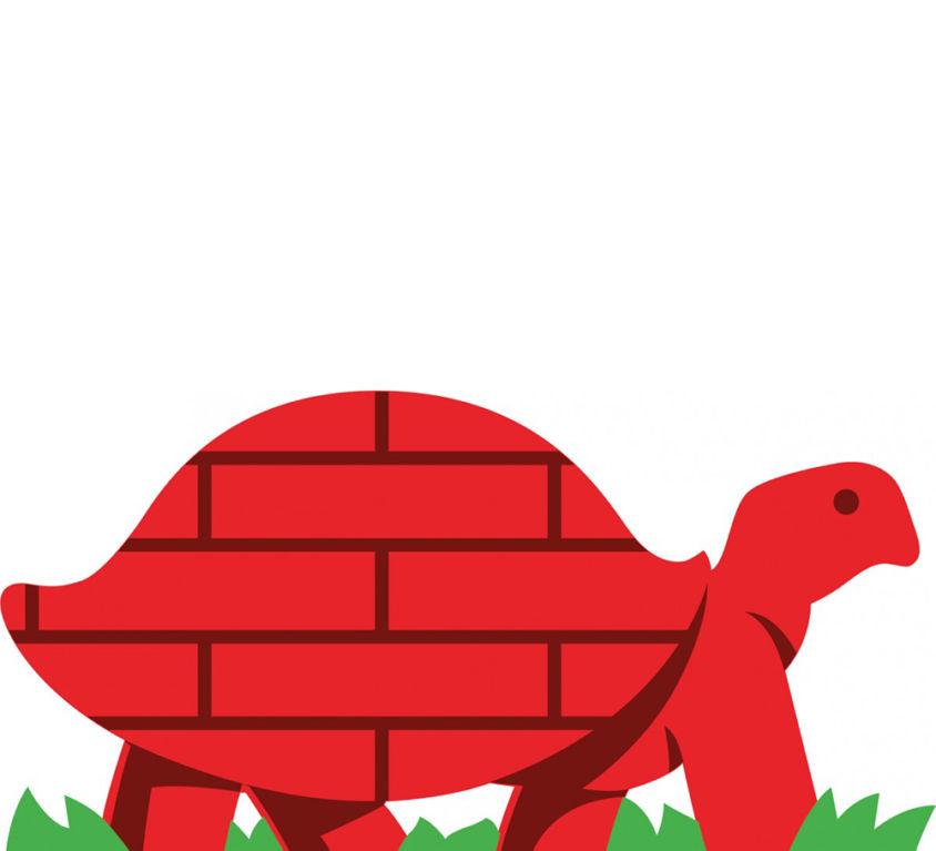 blog_0007_bb_turtle_seule